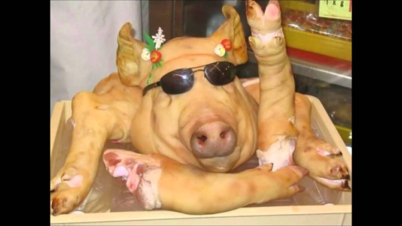 video-pork